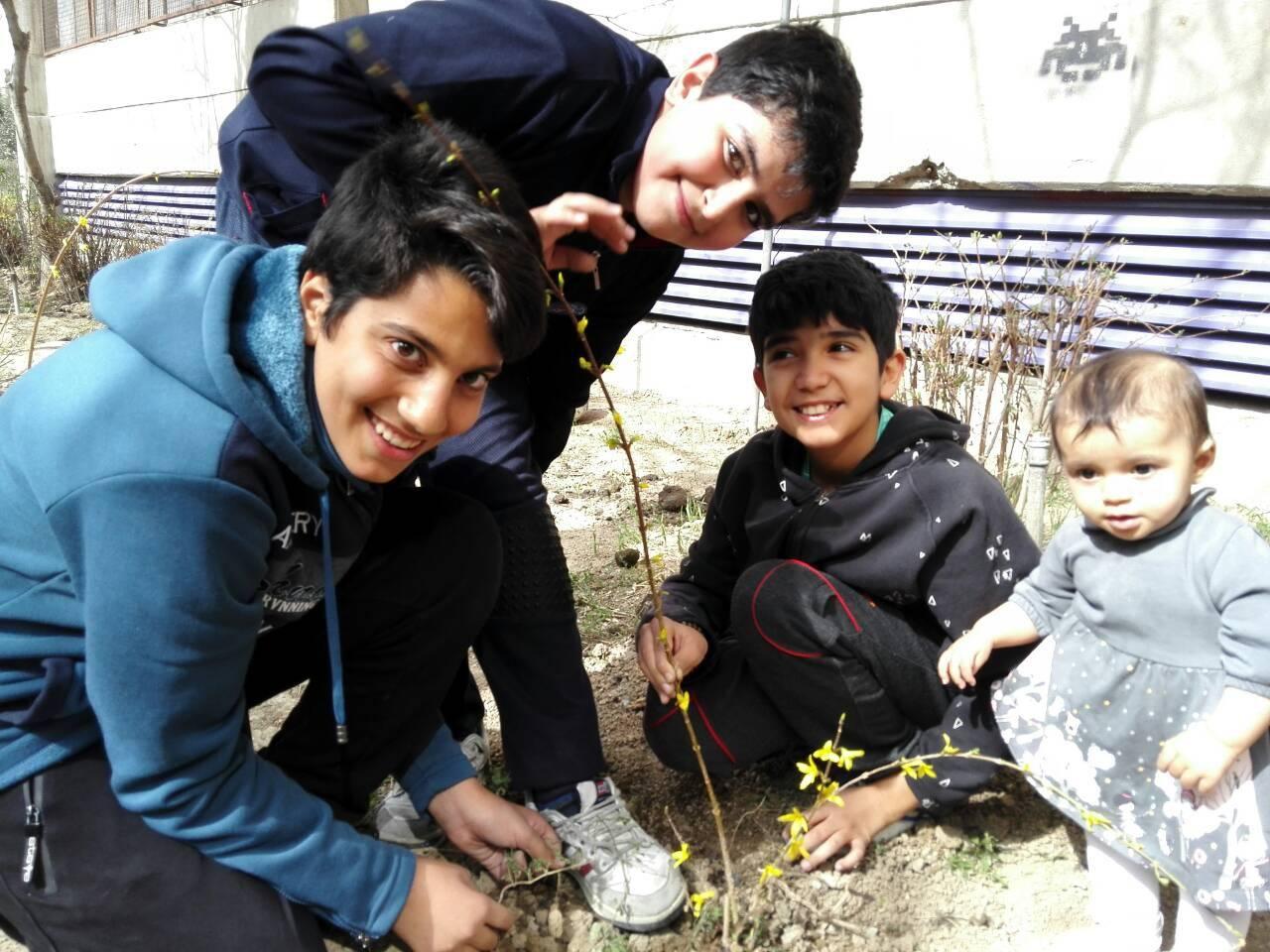 حمایت از درختان به روش کودکان نیکوکار